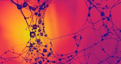 Synapse by Peter Morgan on Flikr. https://www.flickr.com/photos/moogan/5997439279