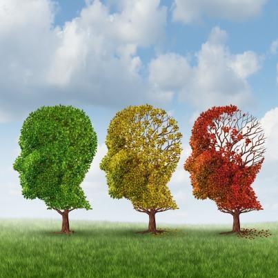 Brain Aging. Kalvicio de las Nieves on Flikr. https://www.flickr.com/photos/118316968@N08/19444505382