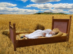 https://pixabay.com/en/bed-cornfield-sleep-good-night-921061/