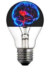 https://pixabay.com/en/light-bulb-brain-absorbed-light-1599359/